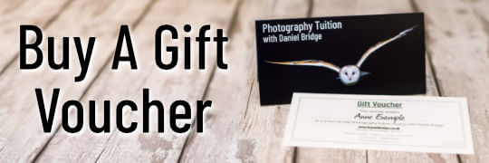 Buy Private Photography Tuition Gift Vouchers Online